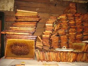 Штабеля рамок с мёдом в доме Владимира